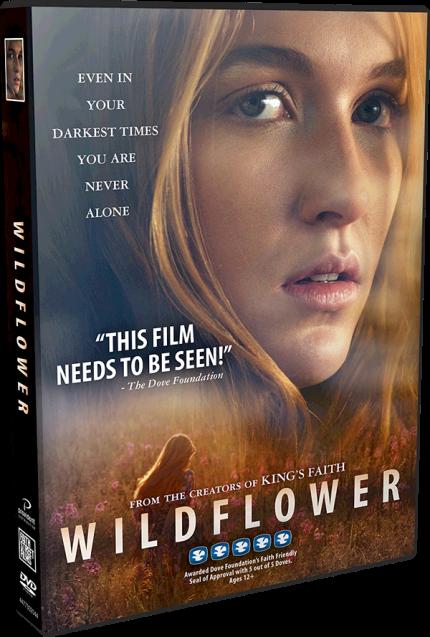 wf-dvd