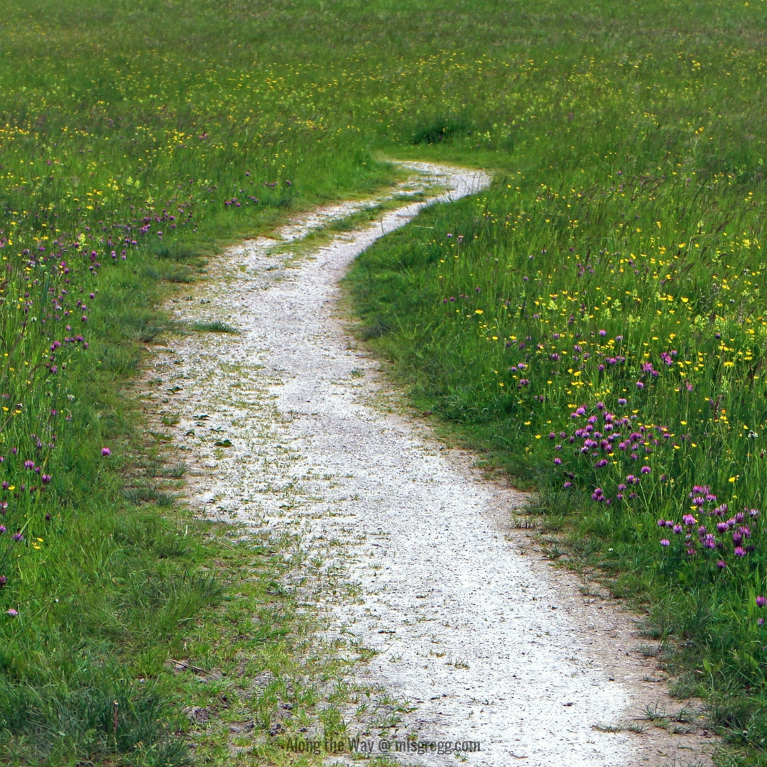 Along the Way @ mlsgregg.com